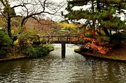 Fall Leaves Prints - Japanese Garden in Autumn 1 Print by Dean Harte