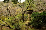Japanese Lantern Prints - Japanese Garden in Autumn 2 Print by Dean Harte