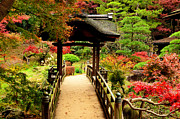 Orient Prints - Japanese Garden in Autumn 7 Print by Dean Harte