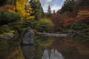 Fall Colors Autumn Colors Posters - Japanese Garden Serenity Poster by Mike Reid
