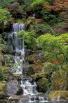 Green Orange Posters - Japanese Garden Waterfall Poster by Sandra Bronstein