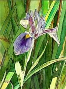 Marionette Paintings - Japanese Iris by Marionette Taboniar
