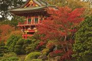 Japanese Tea Garden Prints - Japanese Tea Garden In Golden Gate Park Print by Stuart Westmorland