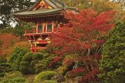 Japanese Tea Garden In Golden Gate Park Print by Stuart Westmorland