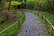 Garden Path Posters - Japanese tea garden path Poster by Garry Gay