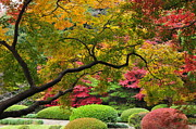Garden Scene Posters - Japnese Autumn Colors Poster by Photos from Japan, Asia and othe of the world