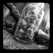 Ttv Prints - Jar of Babies Print by Melissa Wyatt
