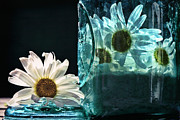 Canning Jar Framed Prints - Jar of Daisies Framed Print by Sari Sauls