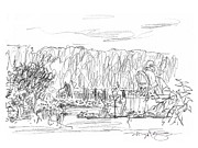 City Garden Drawings - Jardin des Plantes by Marilyn MacGregor
