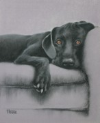 Canvas Dog Prints Prints - Jasper Print by Cynthia House