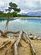 Gregory Dyer - Jasper National Park - Maligne Lake View