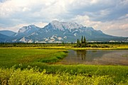 Canadian Landscape Photos - Jasper National Park by Colette Panaioti