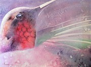 Hummingbird Art - Jazz by Robert Hooper