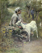 Goat Paintings - Jean Jeanne and Jeannette by Elizabeth Adela Stahope