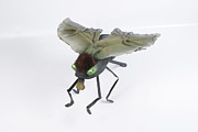 Insect Sculpture Metal Prints - Jeanetic Green-Eyed Fly Metal Print by Michael Jude Russo