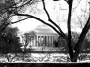 Black And White Prints Pyrography Prints - Jefferson Memorial Print by Fareeha Khawaja