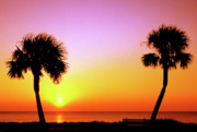 Cabbage Prints - Jekyll Island Sunrise Print by Thomas R Fletcher