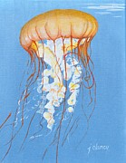Jolaine Goldman - Jellyfish