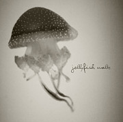 Jellyfish Pyrography Framed Prints - Jellyfish Waltz Framed Print by Tove Jessica Frank