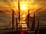 Sunset Greeting Cards Digital Art Prints - Jenner Sunsets Print by Paul Baker