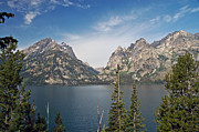 Clear Fall Day Posters - Jenny Lake Poster by Jim Chamberlain