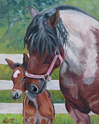 Equine Artist Prints - Jennys New Star Print by Anne West