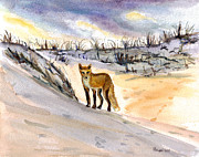 Jersey Shore Painting Originals - Jersey Shore Fox by Clara Sue Beym