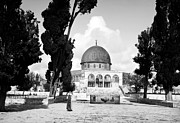 Jerusalem Photos - Jerusalem El Kodus by Munir Alawi