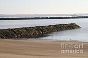 Atlantic Beaches Framed Prints - Jetty In Long Island Sound Framed Print by Photo Researchers, Inc.