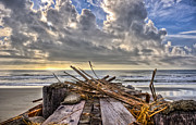 Pawleys Island Prints - Jetty Jetsam Print by Ginny Horton