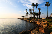 Peninsula Prints - Jetty on Balboa Peninsula Newport Beach California Print by Paul Velgos