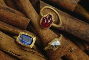 Artifact Photos - Jeweled Rings Are Found In The Wreckage by Sisse Brimberg