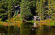 River Flooding Framed Prints - Johnny Sack Cabin II Framed Print by Robert Bales