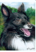 Collie Drawings Posters - JoJo Poster by Karolann Hoeltzle