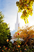 Jordan Photo Posters - Jordan River Temple Rose Poster by La Rae  Roberts