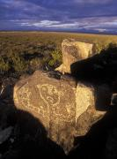New Mexico Landscapes Prints - Jornada Mogollon Petroglyph Site Human Print by Rich Reid