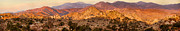 Bitner Prints - Joshua Tree Sunrise Panorama Print by Mariola Bitner