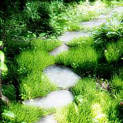 Stepping Stones Prints - Journey Print by Idaho Scenic Images Linda Lantzy
