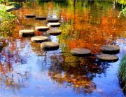 Stepping Stones Prints - Journey of Life Print by Sherwanda Irvin