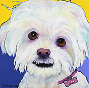 Acrylic Dog Paintings - Joy by Pat Saunders-White            