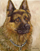 Police Art Painting Prints - Judge a German Shepherd Print by Nora Sallows