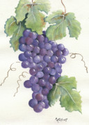 Purple Grapes Framed Prints - Juicy Cluster Framed Print by Marsha Elliott