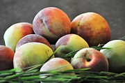 Peaches Prints - Juicy Peaches Print by Lisa  DiFruscio