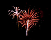 Burst Prints - July 4th Fireworks in Arizona 2 Print by Steven Love