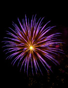 Burst Prints - July 4th Fireworks in Arizona 6 Print by Steven Love