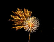 Burst Prints - July 4th Fireworks in Arizona Print by Steven Love