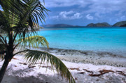 Caribbean Sea Framed Prints - Jumbie Beach-St. John Framed Print by Stephen  Vecchiotti