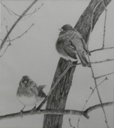 Lilac Drawings - Juncos in the Lilac Bush by Lori Bate