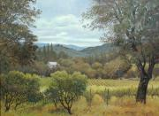 Calistoga Painting Posters - June Morning Poster by Paul Youngman