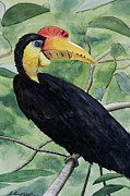 Watercolor Painting Acrylic Prints - Jungle bird Acrylic Print by Anthony Nold